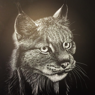 Lynx_Detail